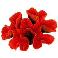 Betta Red Ridge Coral Aquarium Ornament Fish Tank Aquatic Decoration MS920